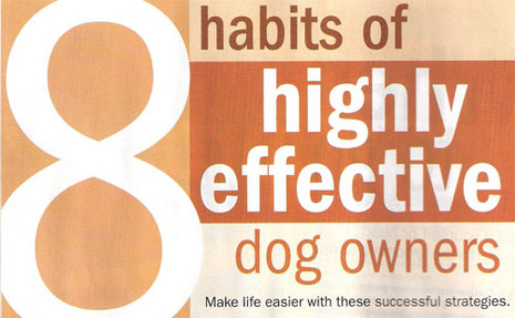8effectivehabitsfordogowner_3