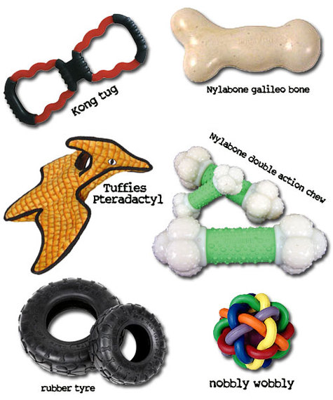 Walkfidodogtoys_3