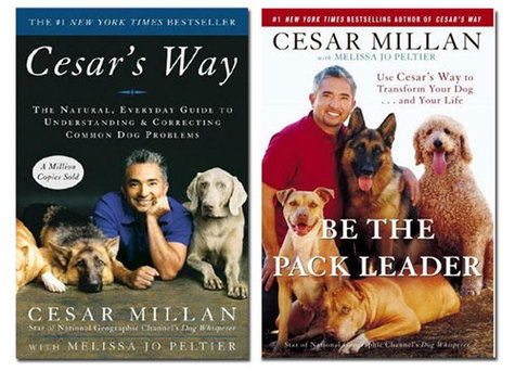 Be_the_pack_leader_cesar_millan