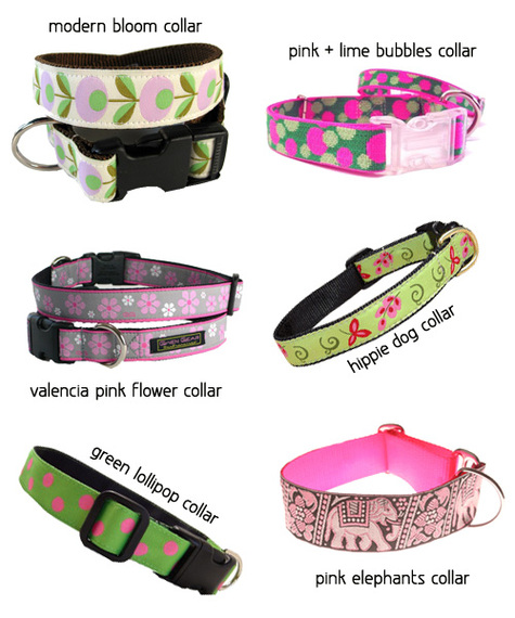 Spring Dog Collars for the Ladies