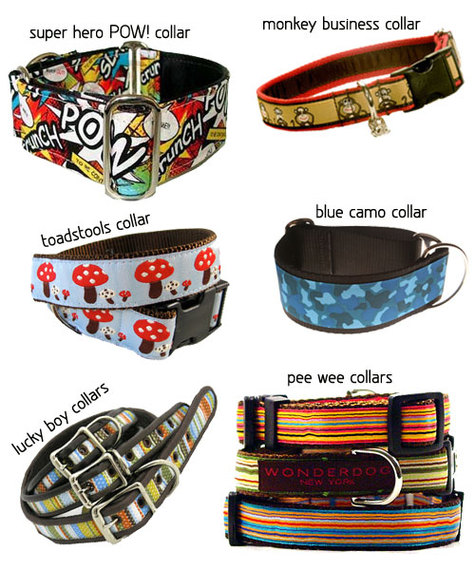 Spring Dog Collars for the Gentleman