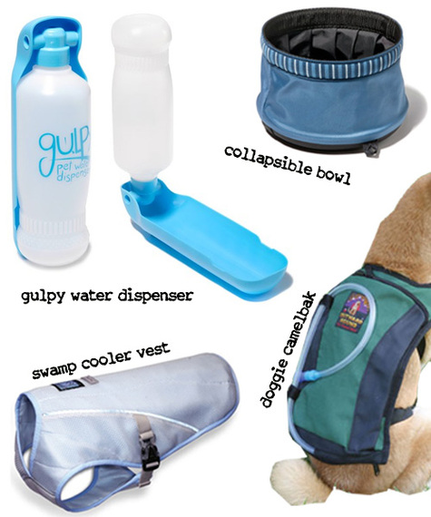Tools to Keep your Dogs Cool in the Summer Heat